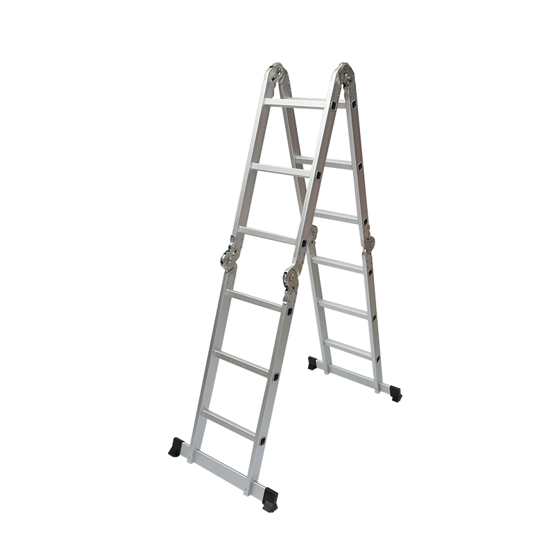 Multifunctional folding ladder